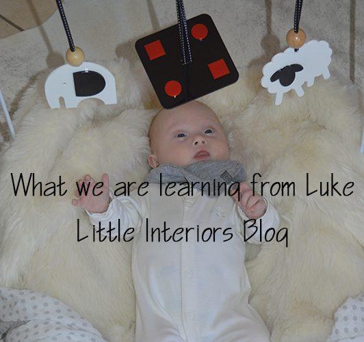 learning-from-luke-post